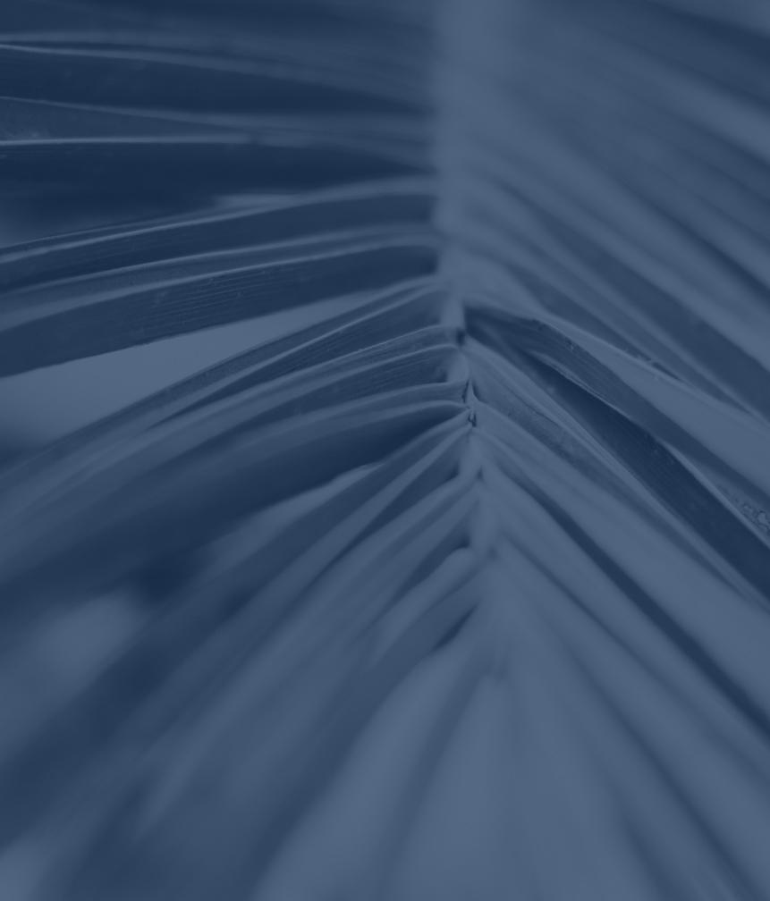 Palm-Text-Box
